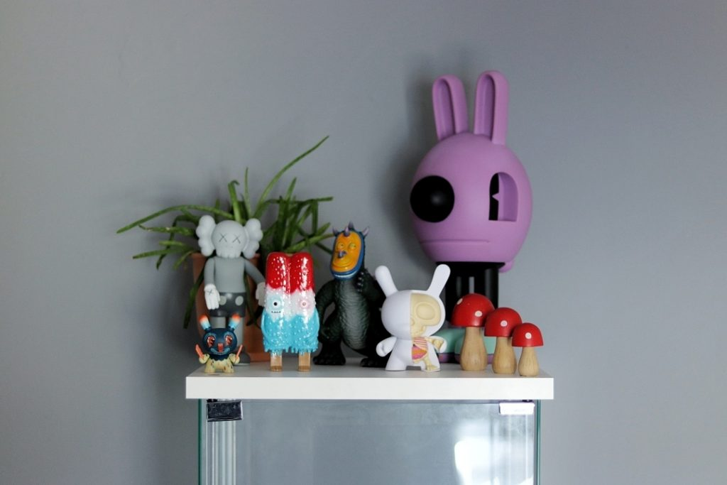 tj collects kidrobot kaws and other toys