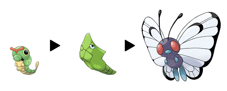 The evolution line of Metapod.