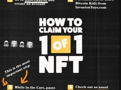 bitcoin kid nft instructions graphic